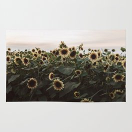 In The Sunflower Field Rug