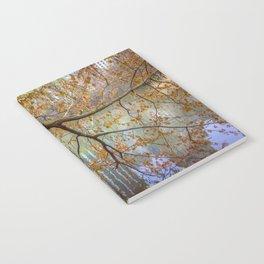 Spring in Central Park Notebook