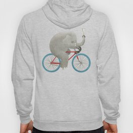 Ride (colour option) Hoody