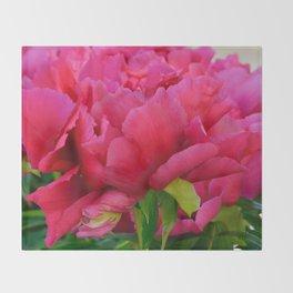 Dark Pink Tree Peony by Teresa Thompson Throw Blanket
