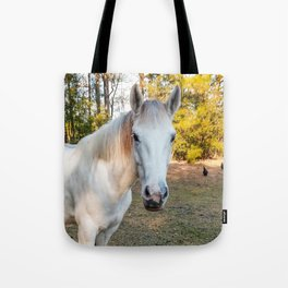 """""""Apache"""" The Worrier Tote Bag"""