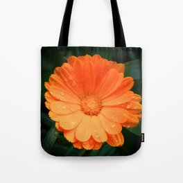 Captivating Calendula Tote Bag