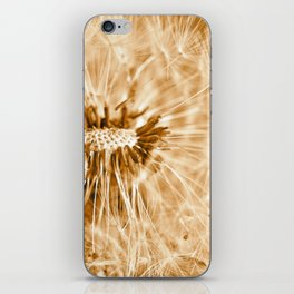 Dandelion 2013 no.15 iPhone Skin