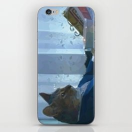 I Should Buy a Boat iPhone Skin