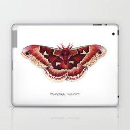 Promethea Silkmoth (Callosamia promethea) Laptop & iPad Skin