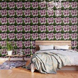 Purple Geraniums Flowers Wallpaper