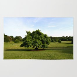 A View From Kenwood House Rug