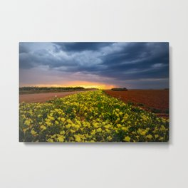 Yellow Flower Road - Path of Wildflowers Lead Into Texas Sunset on Stormy Evening Metal Print