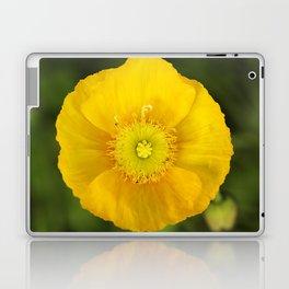 Iceland Poppy Bloom Laptop & iPad Skin