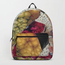 fish-bug-girl Backpack
