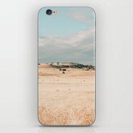 Summer 4 iPhone Skin