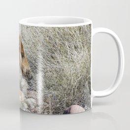 Salt River Colt Taking a Rest Coffee Mug