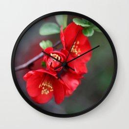 Chaenomeles  - JUSTART © Wall Clock