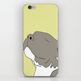 Sunny The Pitbull Puppy iPhone Skin