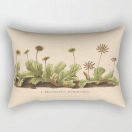 Antique Moss Lithograph Rectangular Pillow