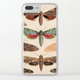 Vintage Natural History Moths Clear iPhone Case