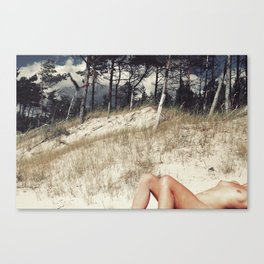 Overdressed Canvas Print