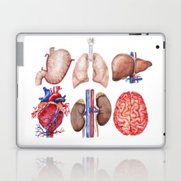 Watercolor organs Laptop & iPad Skin