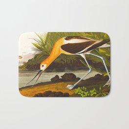 American Avocet Vintage Bird Illustration Bath Mat
