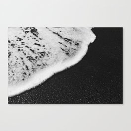 Beach whip Canvas Print