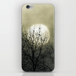 Winter Into Spring iPhone Skin
