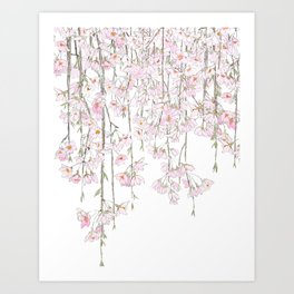 pink cherry blossom spring 2018 Art Print