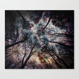 Starry Sky in the Forest Canvas Print