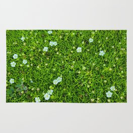 A Piece of Nature Rug