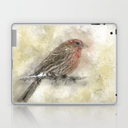 House Finch Laptop & iPad Skin