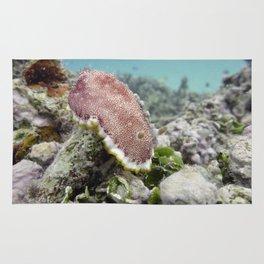 Red Nudibranch Rug