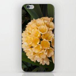 Clivia Apricot iPhone Skin