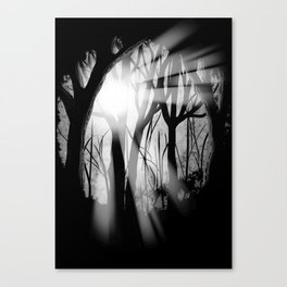 """""""Forest Light""""   Digital Art Canvas Print"""