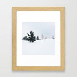 Winter's Song Framed Art Print