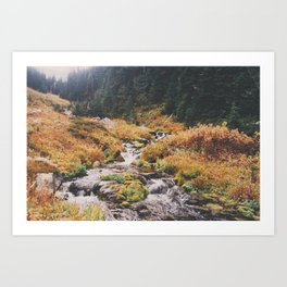 Hike 1 Art Print