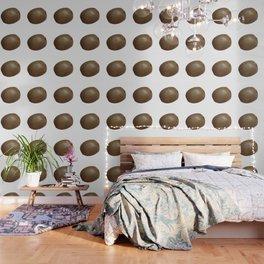 Kiwi Solo Wallpaper
