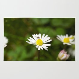 Flower Fly Rug
