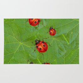 RED LADY BUGS ON GREEN LEAVES DESIGN ART Rug