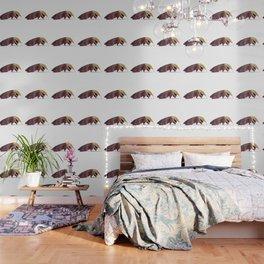 Anteater Wallpaper