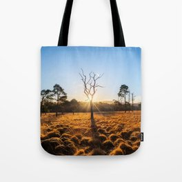 Coronation Plantation - Ireland (RR220) Tote Bag