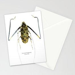 Acrocinus II Stationery Cards