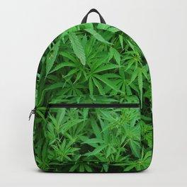 421 Backpack