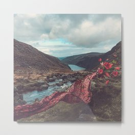 Wicklow and Scarves Metal Print