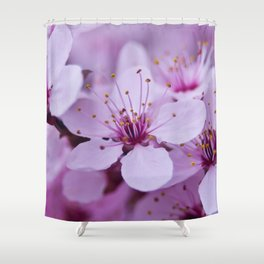 Backyard Blossoms 2 Shower Curtain