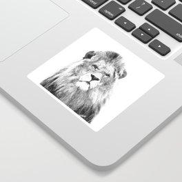 Black and white lion animal portrait Sticker