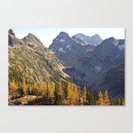 Larches Canvas Print