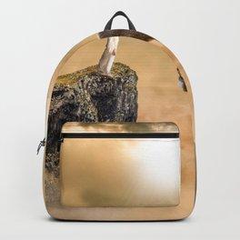 Big Venado Backpack