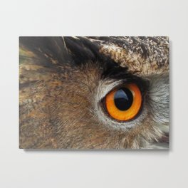 Orange Bird Eye. Eurasian / European Eagle Owl. Metal Print