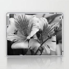 Freesia B&W Laptop & iPad Skin