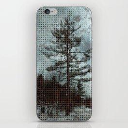 Old Pine Tree iPhone Skin