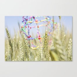 Toy in Hay Soft Canvas Print